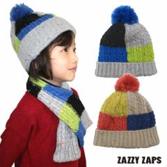 ネコポス発送OK(送料230円) Zazzy Zaps ザジーザップス--カラーブロッキング ニット帽 (S・M) --ユアーズアーミーワールド--