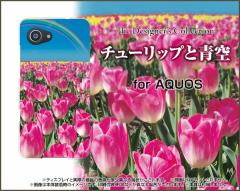 AQUOS R Compact SHV41 701SH SERIE mini SHV38 ハード スマホカバー ケース チューリップと青空 可愛い 花 ピンク(ぴんく)