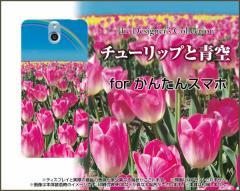 かんたんスマホ 705KC Y!mobile ハード スマホ カバー ケース チューリップと青空 可愛い(かわいい) 花 ピンク(ぴんく)