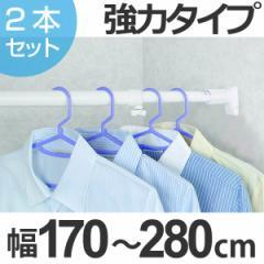 突っ張り棒 取付幅:170〜280cm 特大 突ぱりパワフルポール 白 強力 2本セット