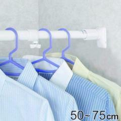 突っ張り棒 取付幅:50〜75cm 特小 突ぱりパワフルポール 白 強力