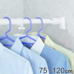 突っ張り棒 取付幅:75〜120cm 小 突ぱりパワフルポール 白 強力