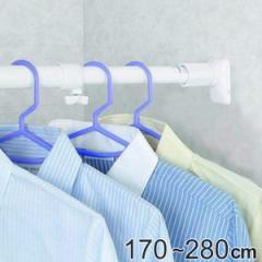 突っ張り棒 取付幅:170〜280cm 特大 突ぱりパワフルポール 白 強力