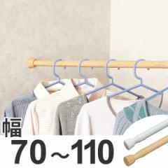 突っ張り棒 取付幅:70〜110cm レギュラーS 突ぱり便利ポール