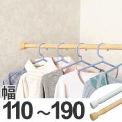 突っ張り棒 取付幅:110〜190cm レギュラーL 突ぱり便利ポール