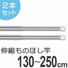 物干し竿 きらきらポール ミニ伸縮竿 1.3〜2.5m 2本セット ( 室内 )