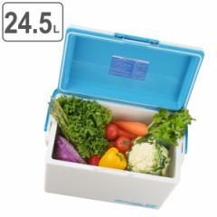 クーラーボックス ハードタイプ デオライド 消臭 24.5L 大型 ( 保冷 クーラーバッグ アウトドア用品 クーラーBOX アウトドア クーラー B
