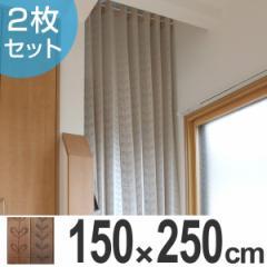 間仕切り カーテン パタッとたためるカーテン 150×250cm 2枚組 ( 仕切り )
