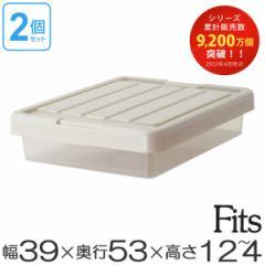 収納ケース Fits フィッツ フィッツケース スリムボックス53 フタ付き 2個セット