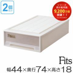 収納ケース Fits フィッツ フィッツケース スリムL 引き出し プラスチック 2個セット ( 押入れ収納 )
