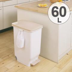ゴミ箱 ふた付き セパ スリムペダルペール 60L
