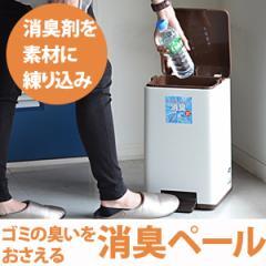 ゴミ箱 キッチン 消臭ペダルペール バケツ付12型 12L ( 分別 )