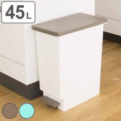 ゴミ箱 ペダル式 ネオカラー 分別 スリムペダル 45 ( 45L 45l スリム キッチン 台所 )