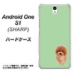 ワイモバイル Android One S1 ハードケース / カバー【YJ052 トイプー01 グリーン  素材クリア】(アンドロイドワン エスワン/ANDONES1用