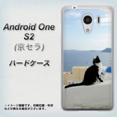 ワイモバイル Android One S2 ハードケース / カバー【VA805 ネコと地中海 素材クリア】(アンドロイドワン エスツー/ANDONES2用)