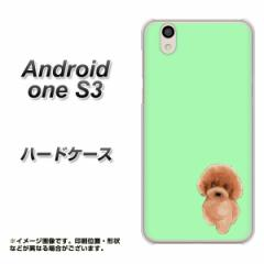 Y!mobile Android one S3 ハードケース / カバー【YJ052 トイプー01 グリーン  素材クリア】(Y!mobile アンドロイドワン S3/ANDONES3用