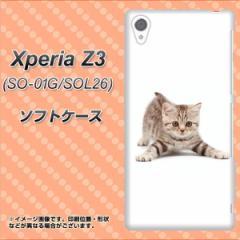Xperia Z3 SO-01G/SOL26 TPU ソフトケース / やわらかカバー【462 かまえて 素材ホワイト】 UV印刷 (エクスペリアZ3/SO01G/SOL26用)