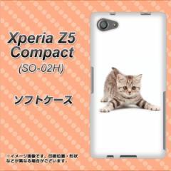 Xperia Z5 Compact SO-02H TPU ソフトケース / やわらかカバー【462 かまえて 素材ホワイト】 UV印刷 (エクスペリアZ5コンパクト SO-02H