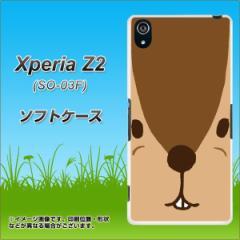 Xperia Z2 SO-03F TPU ソフトケース / やわらかカバー【349 りす 素材ホワイト】 UV印刷 (エクスペリア ゼットツー/SO03F用)