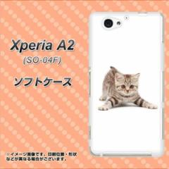 docomo Xperia A2 SO-04F TPU ソフトケース / やわらかカバー【462 かまえて 素材ホワイト】 UV印刷 (エクスペリアA2/SO04F用)