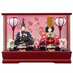 雛人形 親王アクリルパノラマケース 【琴乃】 豆 2人飾り 赤 [間口42cm] 【fn-42】 ひな祭り