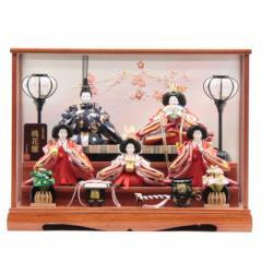 雛人形 ケース入り五人飾り[幅55cm][it-1003] 雛祭り