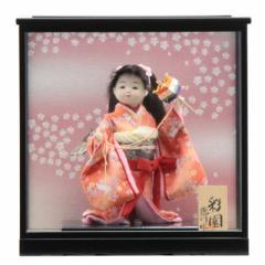 雛人形 ケース入り童人形【彩園】[幅38cm][it-1067] 雛祭り