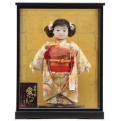雛人形 ケース入り市松人形[幅33cm][it-1086] 雛祭り