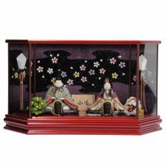 雛人形 木目込み 親王ケース入り【小雪】 [幅57cm] 幸一光 LEDライト付 [193to1251-a34] 雛祭り