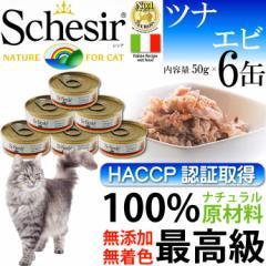 送料無料 Schesir シシア キャットフード ツナ&エビ50g 6缶入り Fa10017