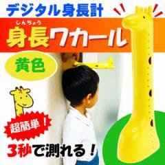 送料無料 デジタル身長計 身長ワカール 黄色 身長測定器 EX-2978 Ha026