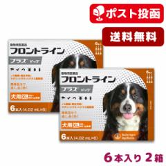 【A】【ポスト投函送料無料】フロントライン プラス 犬用 XL 40-60kg用 6本入 2箱セット【動物用医薬品】