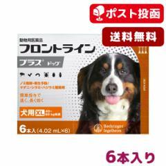 【A】【ポスト投函送料無料】フロントライン プラス 犬用 XL 40-60kg用 6本入【動物用医薬品】