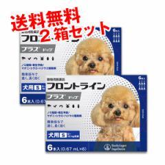 【動物用医薬品】フロントラインプラス犬用S(5〜10kg)6本入 2箱セット