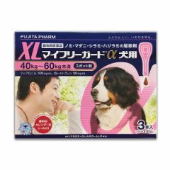【動物用医薬品】マイフリーガードα 犬用 XL 40-60kg用 3本入