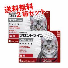 【B】【動物用医薬品】フロントラインプラス猫用 1箱6本入 2箱セット