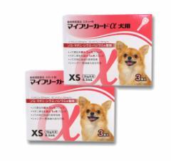 【B】【動物用医薬品】マイフリーガードα犬用 XS 5kg未満用 3本入 2箱セット