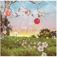 送料無料有/[CD]/松尾清憲/THIS TINY WORLD/CDSOL-1689