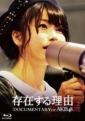 送料無料有/[Blu-ray]/存在する理由 DOCUMENTARY of AKB48 Blu-rayスペシャル・エディション/邦画 (ドキュメンタリー)/TBR-26332D