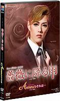 送料無料有/[DVD]/薔薇に降る雨/Amourそれは・・/宝塚歌劇団/TCAD-252