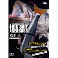 ●【DVD】ラン&ガン ソルト Vol.2 ビッグベイトシーバス 橋本景 【メール便配送可】