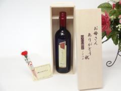 母の日 ギフトセット ワインセット お母さんありがとう木箱セット(ブルーサ 赤ワイン 750ml(イタリア))ギフト のし可