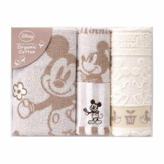 贈り物セット  ディズニー ミッキー ナチュラルガーデン タオルセット DS-2540