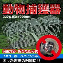 【送料無料】動物捕獲器 有害動物捕獲 330x350x920mm(約) 大 前後対応 折りたたみ式 ノネコ 猫 狸