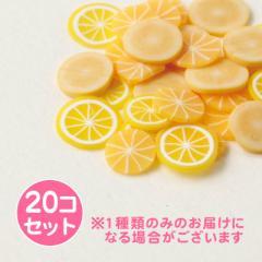 橙色系/レジン用フルーツフレークパーツセット