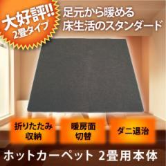 【送料無料】ホットカーペット 2畳 相当 本体 電気カーペット 電気暖房 TEKNOS テクノス TWA-2000B 暖房面積切換 ダニ退治【翌日配達】