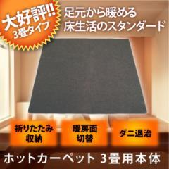 【送料無料】ホットカーペット 3畳 本体 折り畳み収納 TEKNOS テクノス 電気カーペット TWA-3000B 暖房面積切換 ダニ退治