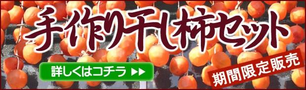干し柿セットはこちら