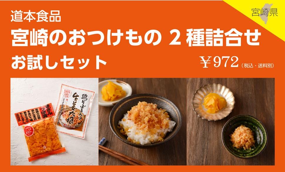 宮崎県 道本食品 宮崎のおつけもの 2種詰合せ お試しセット¥972(税込・送料別)