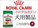 ロイヤルカナン 犬用製品